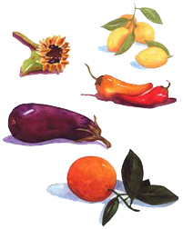 watercolor veges